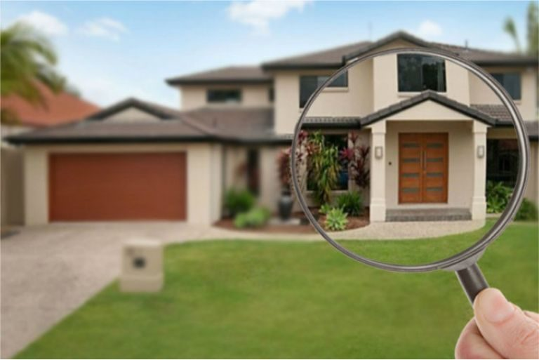 How to find a reliable pest inspector in Adelaide